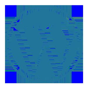 Ícono de WordPress